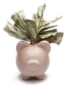 iStock_000004130332Large[1] piggy bank